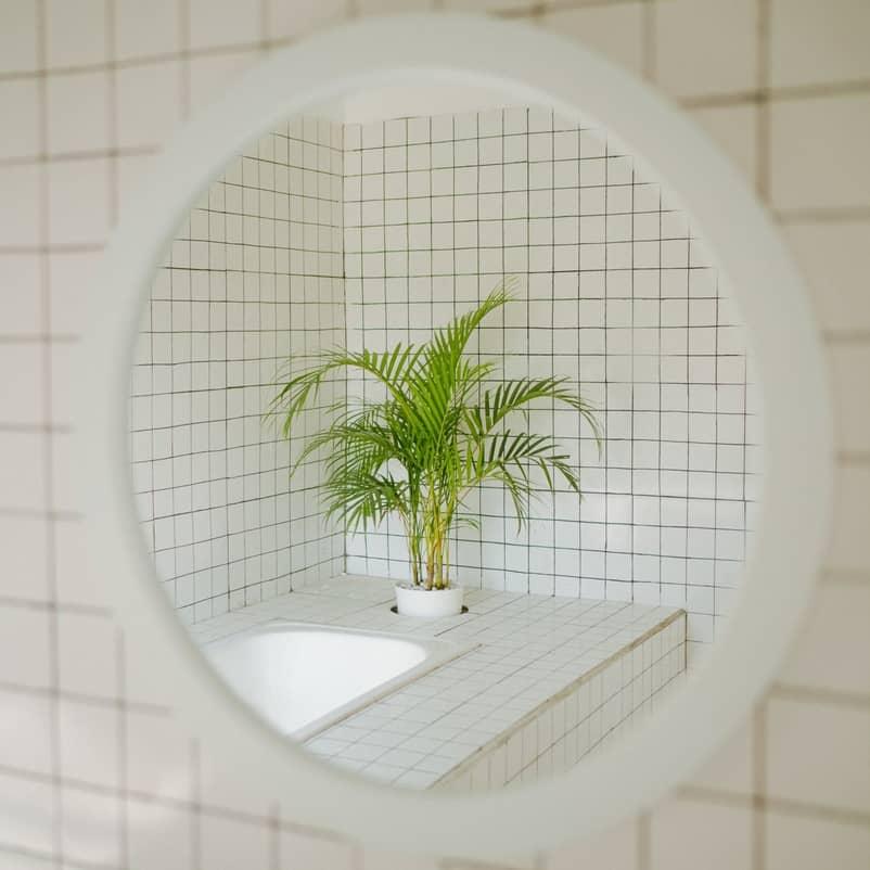 interjeras veidrodis