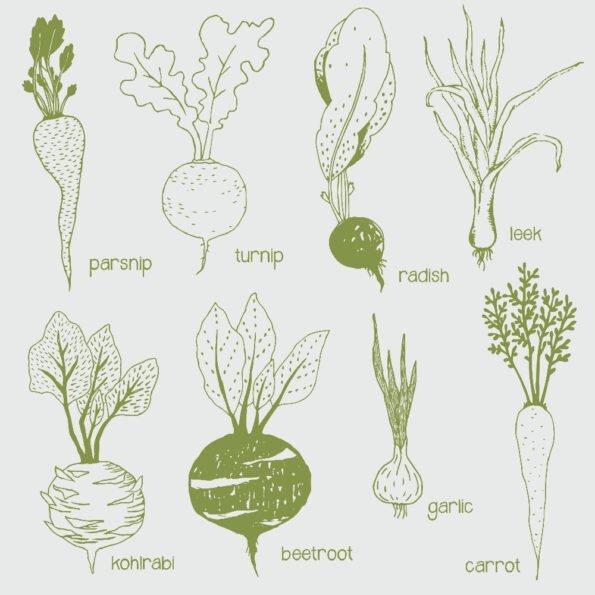 Servetėlės Vegetables
